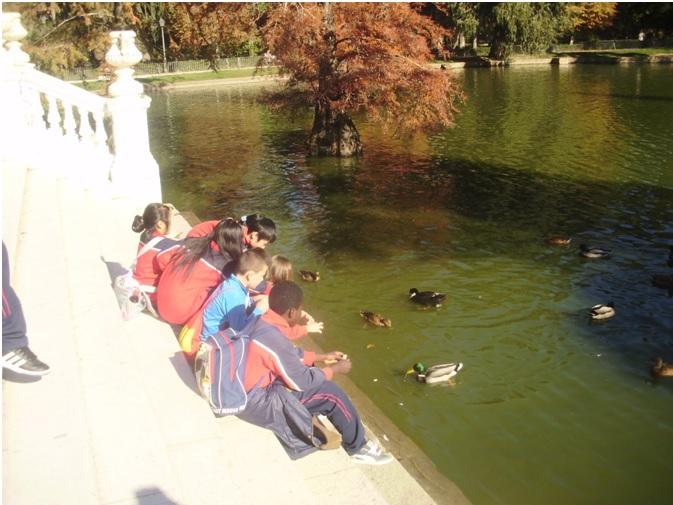 Visita al Parque del Retiro